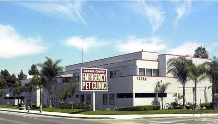 Garden Grove Pet Hospital 28 Images Image Gallery Pet